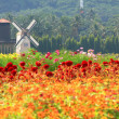 Windmill netherlands style in beautiful flower garden : vineyard — Stock Photo