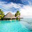 Infinity pool with palms and tropical ocean - Stock Photo