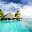 Stock Photo: Infinity pool with palms and tropical ocean