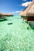 Over water bungalows over amazing green lagoon — Stock Photo