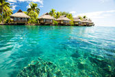 Over water bungalows with steps into green lagoon — Stok fotoğraf