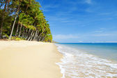 Deserted tropical beach with palm trees — Stock Photo