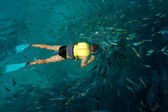 Male snorkeler surrounded by the fish — Foto de Stock