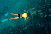 Plongeur mâle entouré par les poissons — Photo