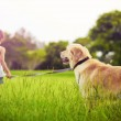 Young girl with golden retriever walking away — Stock Photo