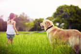Young girl with golden retriever walking away — Stok fotoğraf