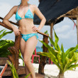 Girl in bikini under tropical hut - Stock Photo