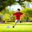 Young excited boy kicking ball in the grass - Стоковая фотография