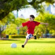 Young excited boy kicking ball in the grass - Zdjęcie stockowe