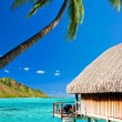 Bungallow and palm with steps to amazing lagoon - Stock Photo