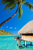 Bungallow and palm with steps to amazing lagoon — Stock Photo