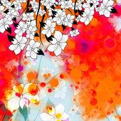 Toile de fond colorée de fleurs blanches — Photo