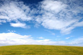 Green glade against the blue sky — Stock Photo