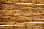 Bamboo background — Zdjęcie stockowe