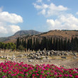 Beautiful view of Hierapolis, ancient Rome city - Stock Photo