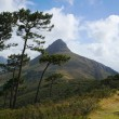 Lion's Head peak - Stock Photo