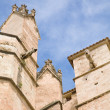 Buttresses and gargoyles,; cathedral La Seu; Palma de Mallorca - Stock Photo