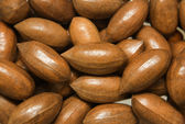 Ripe pecan nuts background; — Stock Photo