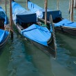 Venice; moored gondolas — Stock Photo #5033931
