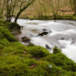 River Barle close to Dulverton, Somerset, UK, winter - Stock Photo