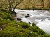 River Barle close to Dulverton, Somerset, UK, winter — Stock Photo