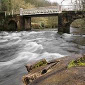 Marsh bridge, Dulverton, Somerset, UK, early sping — Stock Photo