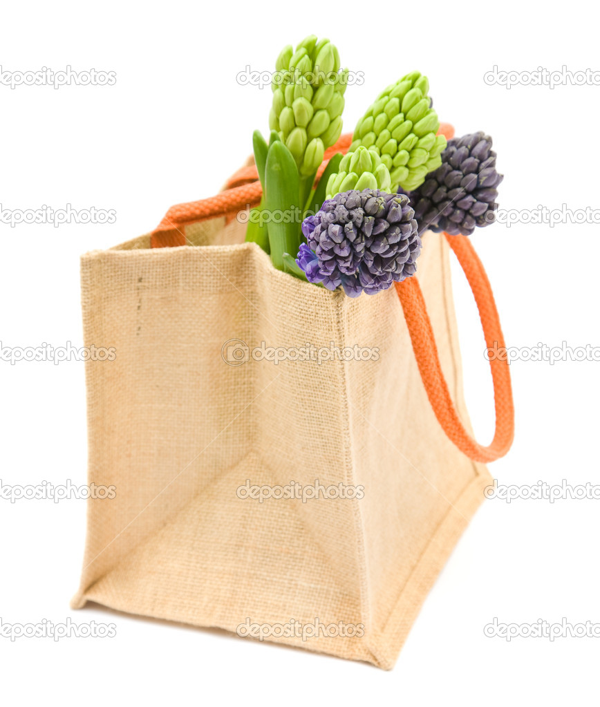 Bunch of blue and white hyacinth bud cluster in reusable canvas shopping ba — Stock Photo #5102934