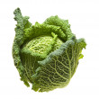 Savoy cabbage head isolated on white background; - Stock Photo