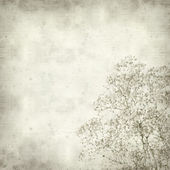 Textured old paper background with Gypsophila (Baby's-breath) — Foto Stock
