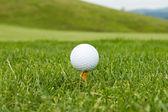 Golf ball on a tee — Stock Photo