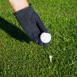 Hand in glove golf black, putting a ball on a tee peg. — Foto de Stock