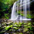 Stunning Waterfall - Stock Photo