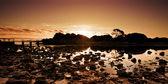 Peaceful Creek Sunrise — Stock Photo