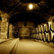 Stock Photo: Wine Cellar