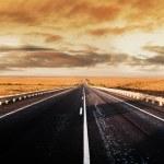 Road Panorama — Stock Photo