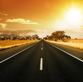 Gorgeous Sunset Road — Stock Photo