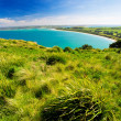 Tasmanian Coast - Stock Photo