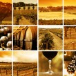 Wine Montage - Stockfoto