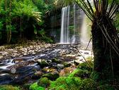 Beautiful Falls — Stock Photo
