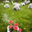 Splendid wedding venue - blossoming orchard on 1st of May — Stock Photo #4677617