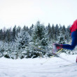 Young man cross-country skiing on a snowy forest trail (color to — Stock Photo #4695802