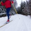 Young man cross-country skiing on a snowy forest trail (color to — Stock Photo #4695873