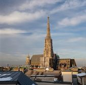 St. Stephan cathedral - Vienna, Austria (panoramic image compose — Stock Photo