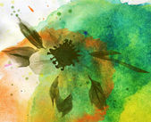 WATER COLOR BACKGROUND WITH FLOWER — Stock Photo