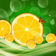 BACKGROUND WITH CITRUS — Stock Photo