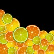 CITRUS MIX — Stock Photo #5147779