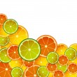 CITRON MIX ON WHITE — Stock Photo #5210321