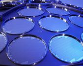 硅单晶片生产过程 — 图库照片