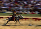 Knight on a white horse motion blured — Stock Photo