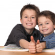 Two young boys learning — Stock Photo #4948669